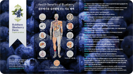 Health Benefits of Blueberry - RohthemBlueberry.com