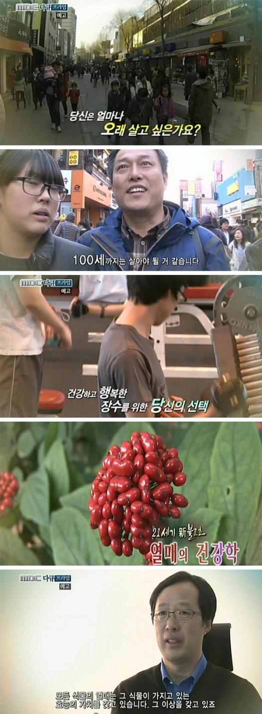 MBC 다큐프라임 234회 진생열매