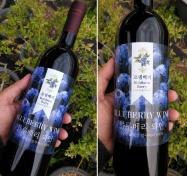 블루베리 와인